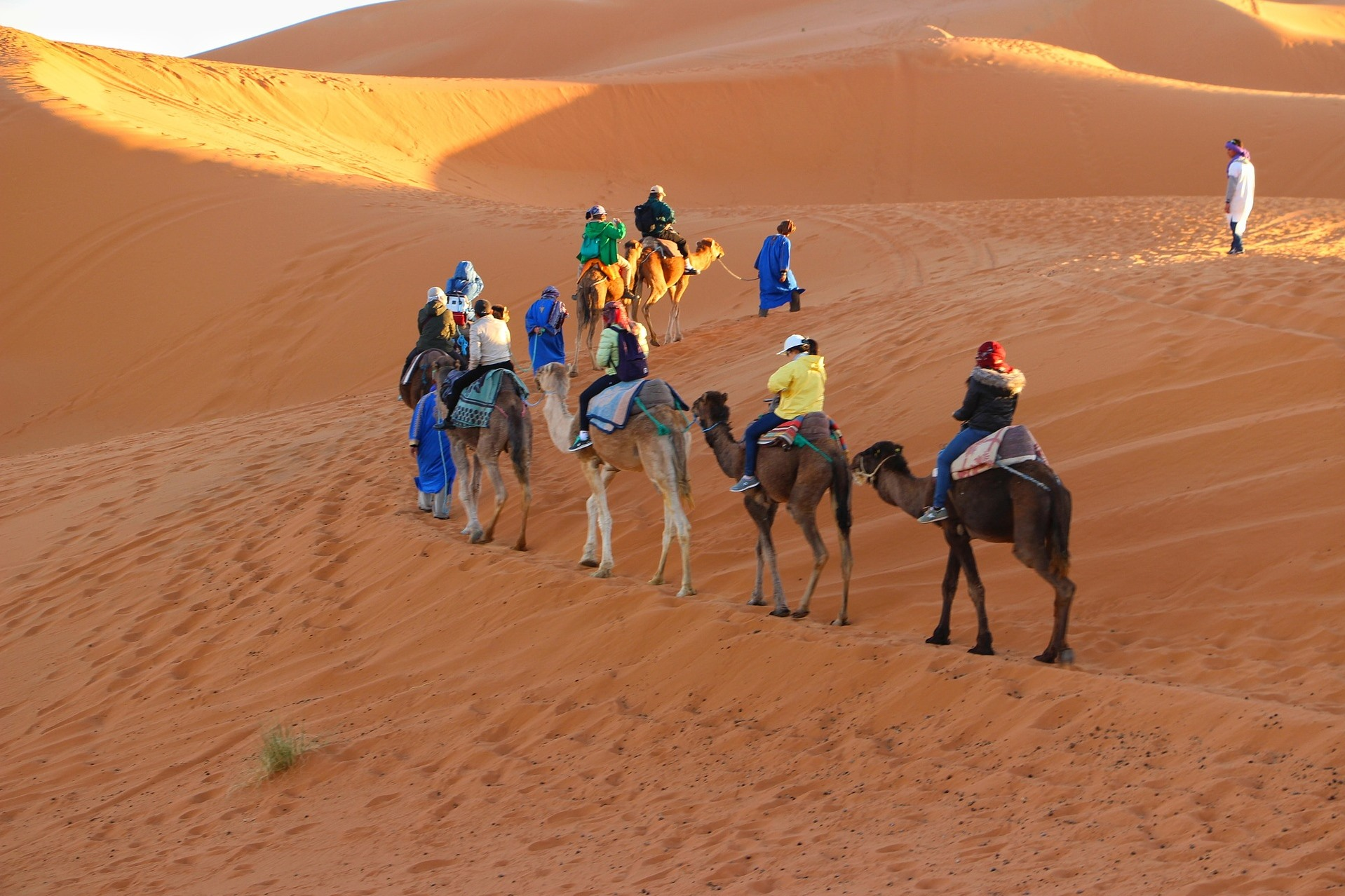 Camel ride in Jaisalmer